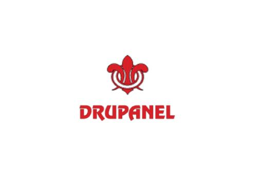 Logo Drupanel 500
