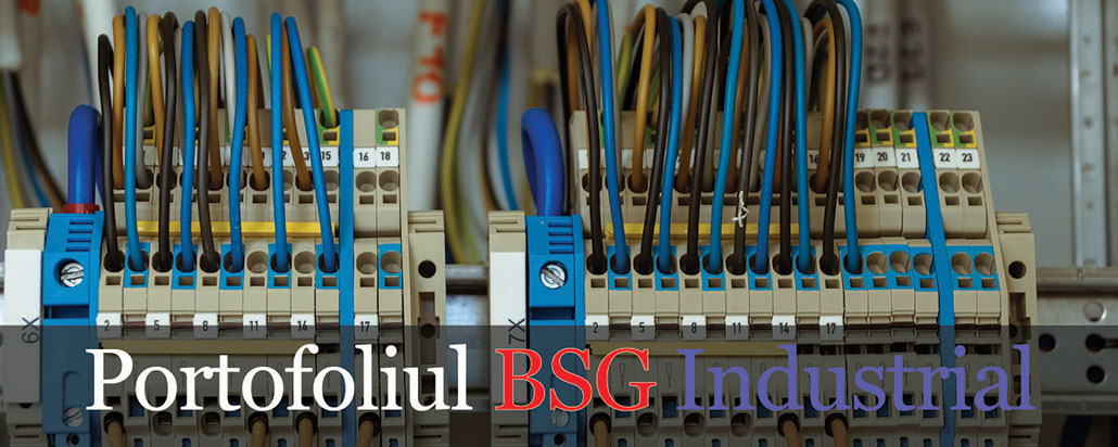 portofoliu_bsg_industrial